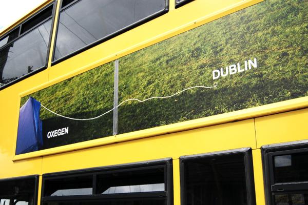 bus 19